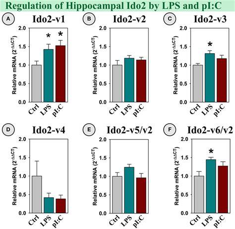 frontiers regulation of interferon gamma frontiers immunomodulatory factors galectin 9 and