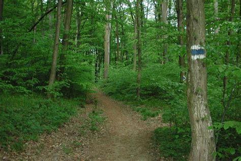 excursiones pueblos lugares visitar bosques de viena excursiones lugares que ver