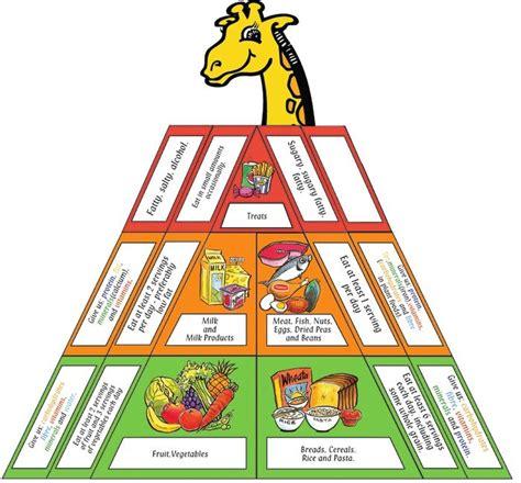 healthy fats nz food pyramid new zealand nutrition food