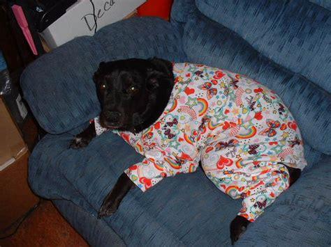 pajamas large breed pajamas for big dogs bigdog boutique
