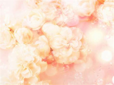 wallpaper flower pastel fantasy flowers pastel peach art background