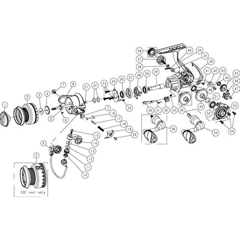 quantum reel parts diagram reel repair schematics reel get free image about wiring