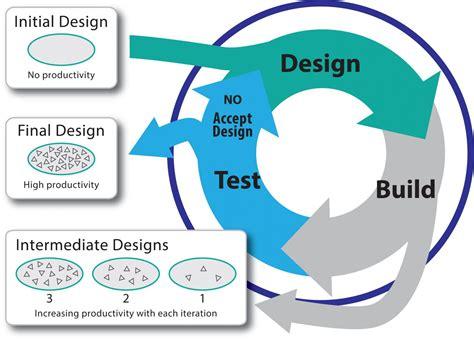 cicli testi fluorescent biosensors light up high throughput metabolic
