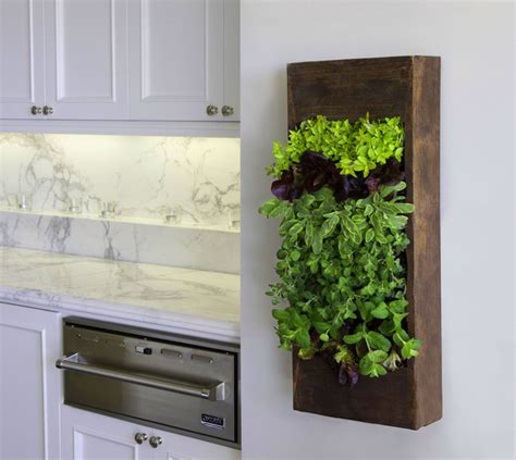 Vertical Kitchen Garden Indoor Vertical Wall Garden