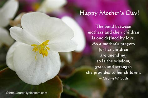 s day grace happy mother s day our daily blossom