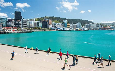 looksee wellington new zealand is offering free holidays to people who agree