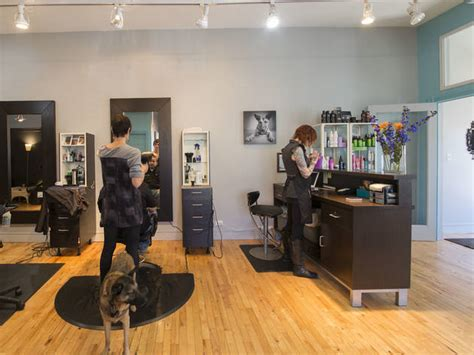 haircut salon and more budapest hair salons in chicago for hair cuts color and blowouts