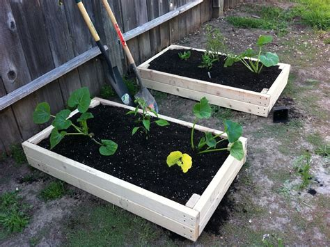 Simple Planter Box by 2x4 Planter Boxes Make