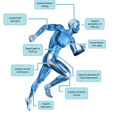 dehydration effects drink water it s clear as for athletes south west sport