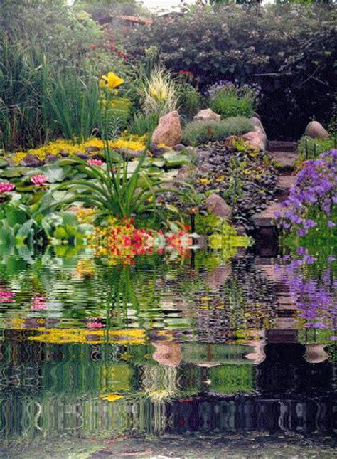 gods gracious gardens god  creator photo  fanpop