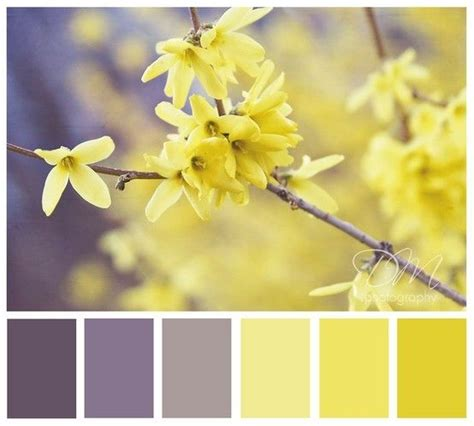 gray and yellow color schemes 25 best ideas about yellow color schemes on pinterest