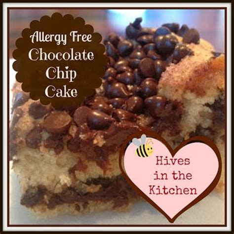 The Allergy Free Kitchen by Hives In The Kitchen Allergy Free Chocolate Chip Cake