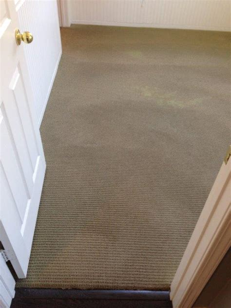 Rug Cleaning San Diego by Pq Carpet Cleaning San Diego Carpet Cleaning Service
