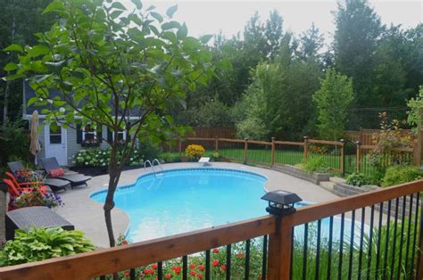 amazon pool amazon pools and spas inc fredericton nb 520