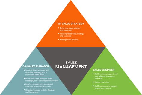 sales management for companies with a develop your sales