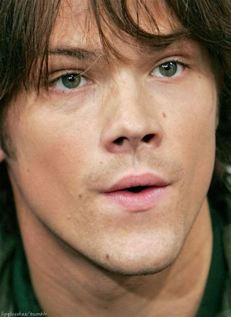 jared padalecki house of wax jared padalecki