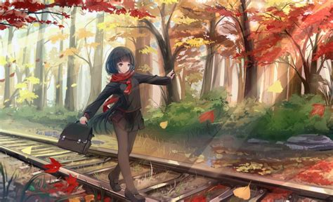 anime fall anime fall wallpapers 59 images