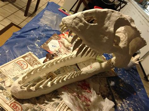 How To Make A Paper Mache Dinosaur Sculpture - how to make a big dinosaur skull for money