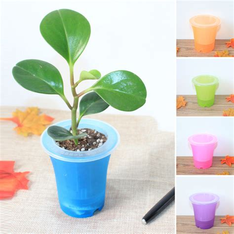 office pots automatic watering home office garden flower pot home