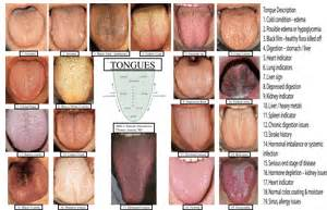 tongue color tongue tips by zoebess entry