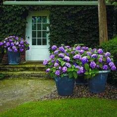 perennial garden designs zone 4 perennial garden plans zone 4 house design and