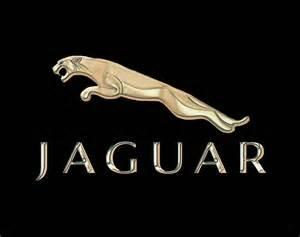 Jaguar Emblem Jaguar Car Emblem Design By Walter Colvin