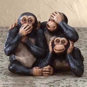 Monkey See Monkey Do Monkey See Monkey Do
