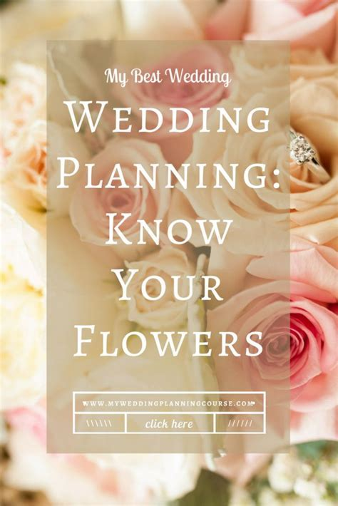 Top 25  best Wedding planning websites ideas on Pinterest