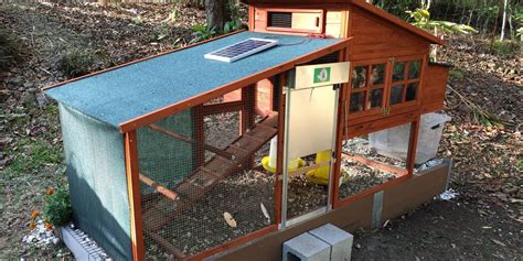 backyard chicken coop ideas 11 backyard chicken coop ideas for aspiring homesteaders