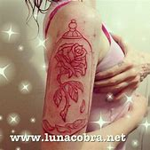 Enchanted rose ...