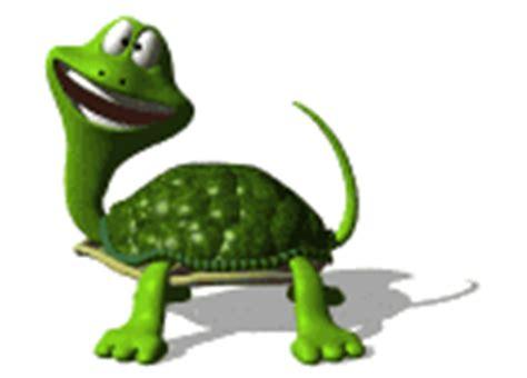 imagenes gif animales im 225 genes animadas de tortugas gifs de animales gt tortugas