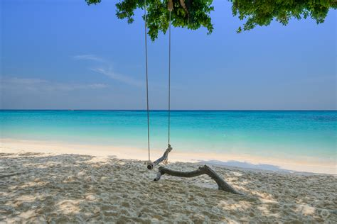 swings on the beach swings on the beach background high quality free backgrounds
