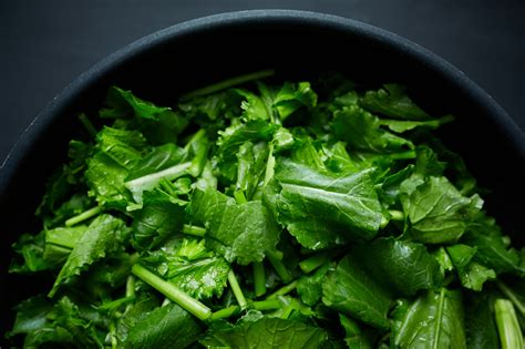 southern turnip greens recipe with salt pork