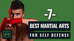 Image result for Top 10 Deadliest Fighting Styles