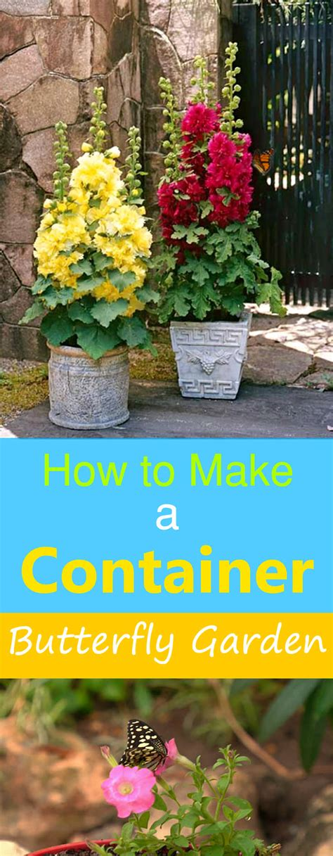 How To Make A Butterfly Garden by How To Make A Butterfly Container Garden A