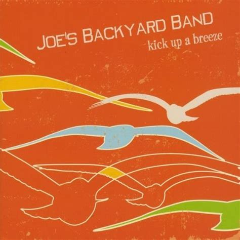 backyard band mp3 amazon com cities with seagulls joe s backyard band mp3