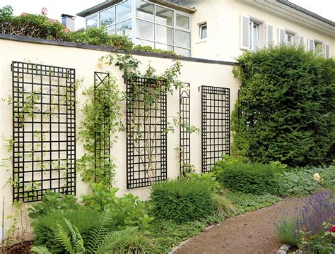 Best Trellis Wall Iron Trellis Outdoor Decorations
