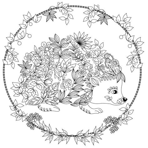 coloring page of a hedgehog cute hedgehog coloring page design ms malvorlagen