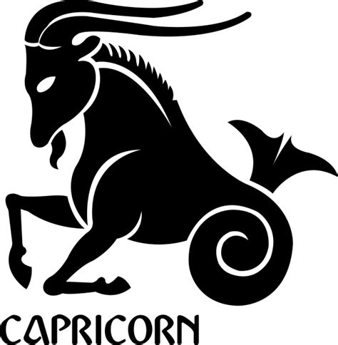Stylish Homes Decor by Capricorn Zodiac Sign Symbol Premium Removable Wall Decal