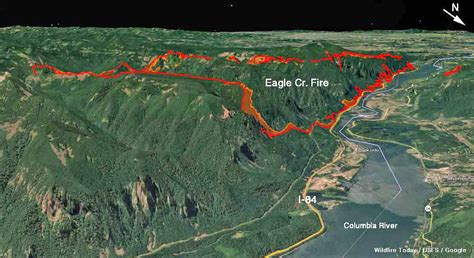 map of oregon eagle creek eagle creek burns structures and forces evacuations
