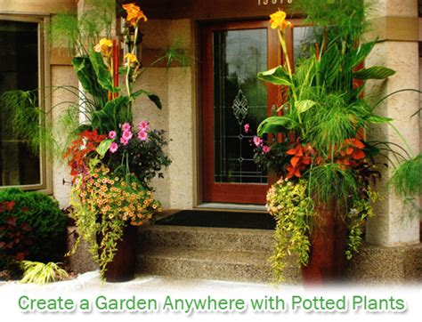 Best Plants For Patios by Great Gardens With Potted Plants