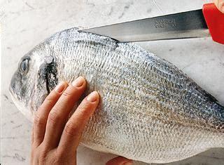 come cucinare il pesce al forno ricette cucinare il pesce le ricette di giallozafferano