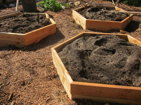 Buying Soil For Vegetable Garden Advantages And Disadvantages Of Raised Bed Vegetable