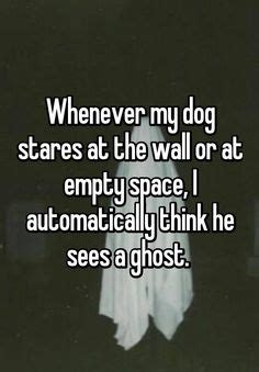 what is my thinking when he stares at me 1000 ideas about ghost humor on dumb jokes humor and ecards