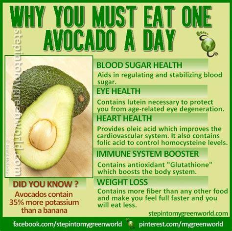 my ate avocado 17 best ideas about avocado health benefits on avocado benefits banana