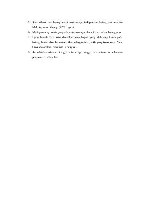 Plastik Pembungkus Okulasi laporan praktikum pembiakan vegetatif okulasi grafting