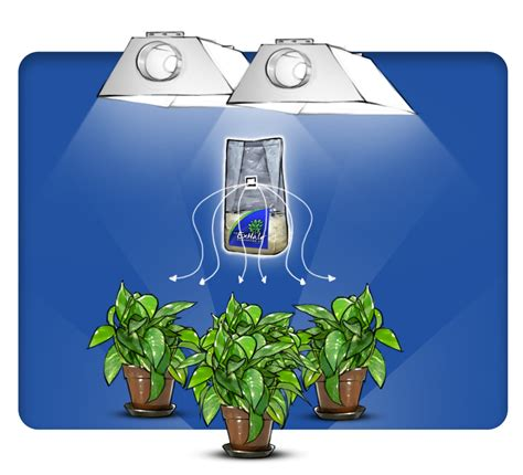 co2 grow room carbon dioxide enrichment managing co2 in your grow space