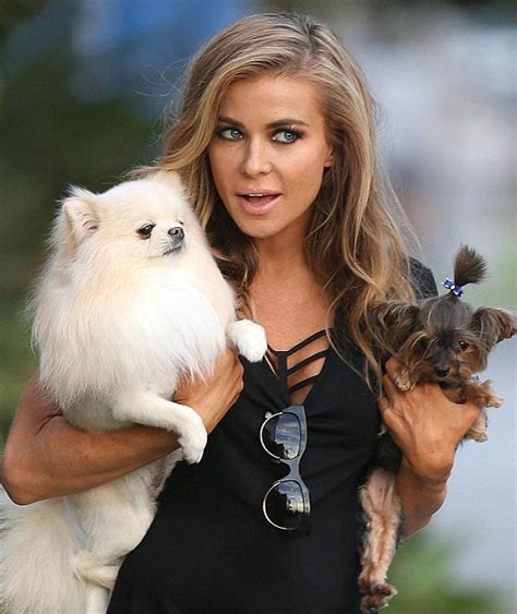 famous people who own yorkie poms 12 celebrities with pomeranians