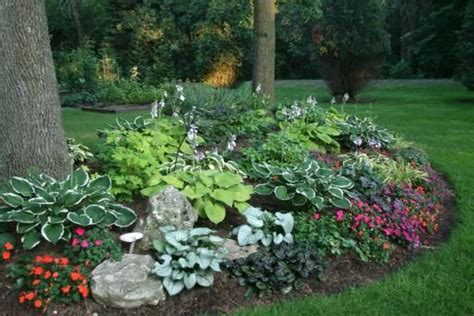 hosta garden layout hosta garden layout hostas flowers pictures beautiful