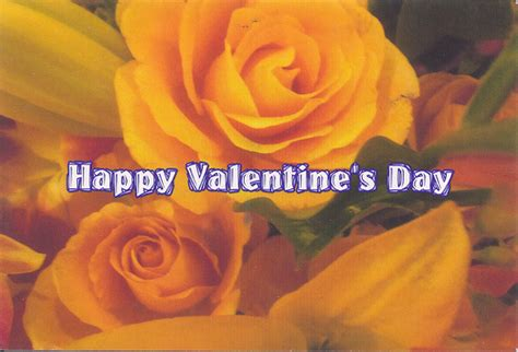 yellow roses valentines day yellow roses happy s day flickr photo